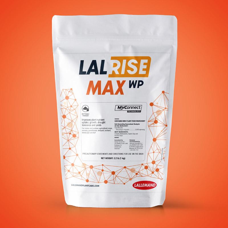 LALRISE MAX WP main image