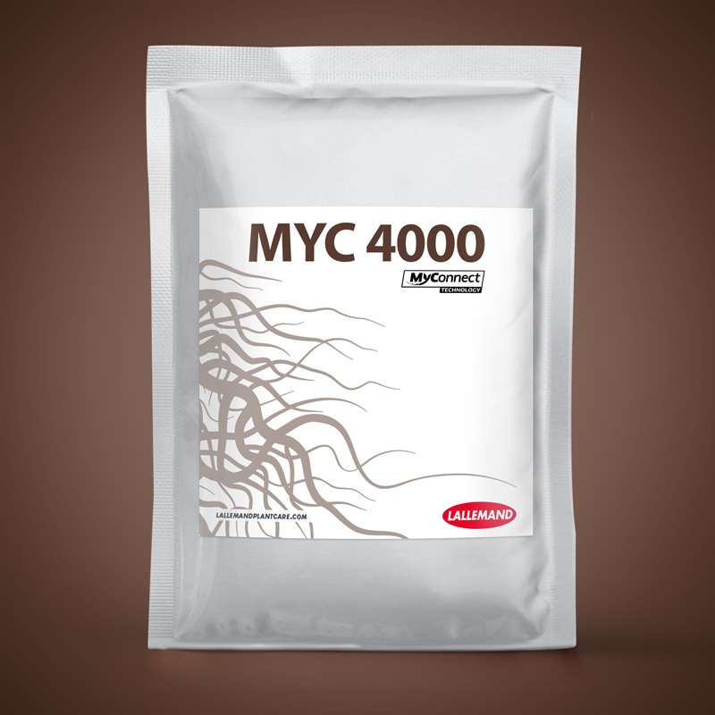 MYC 4000 main image