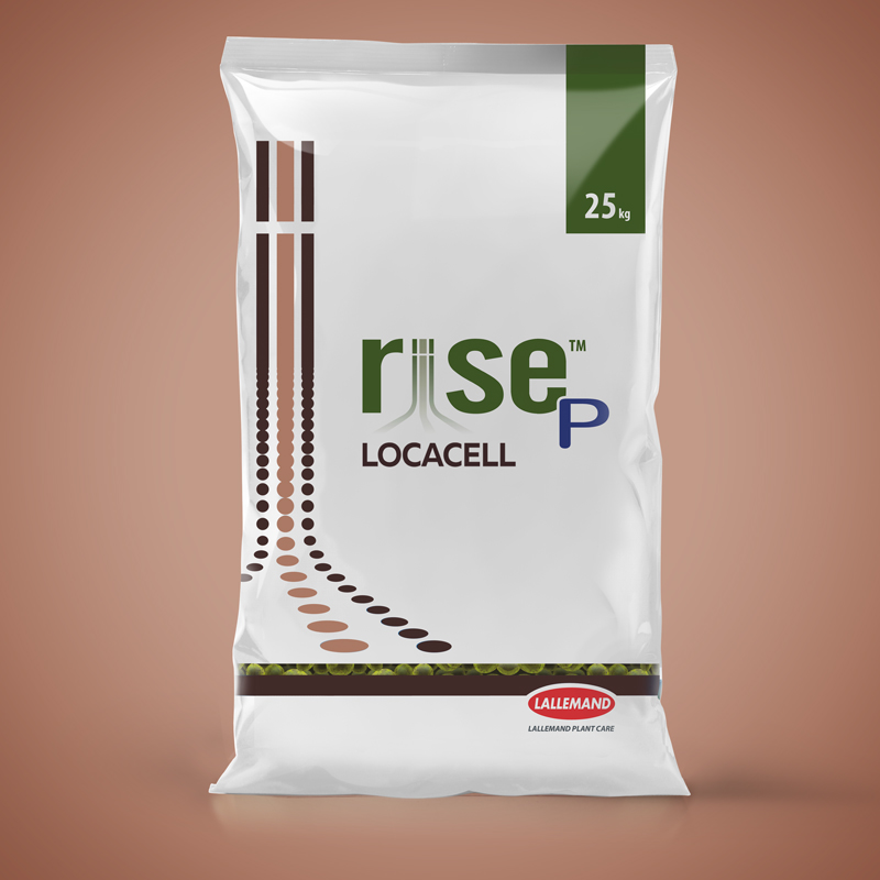 RISE P Locacell main image