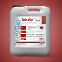 INTRACELL CA