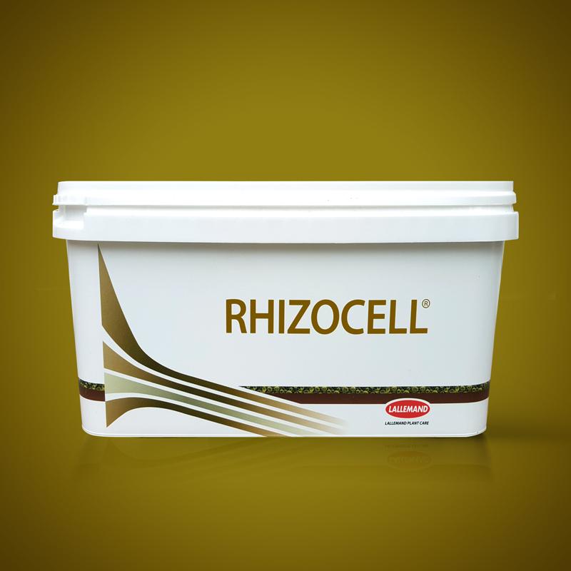 RHIZOCELL main image